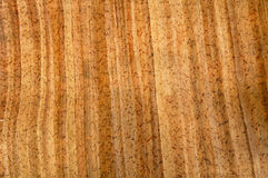 Documento modellato legno 7 Fotografia Stock Libera da Diritti