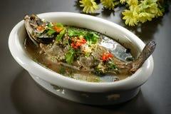 Dodatek specjalny braised grouper ryba z polewką w chińskim stylu w bielu zdjęcia royalty free