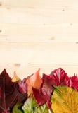 dodatkowej jesień karciany format Zdjęcie Royalty Free