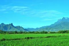 8 dodatkowy eps formata trawy krajobrazu gór wektor Fotografia Royalty Free