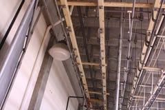 Dode Dierlijke Hangende Zaal Stock Fotografie