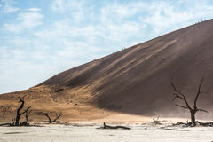 Dode droge bomen en silhouetten van mensen op een rand van het zandduin Royalty-vrije Stock Foto's