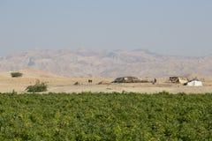 Dode Overzees, Jordanië 24 December 2015: Nomadische mensen die van het dode overzees leven Stock Foto