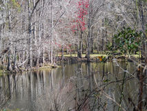 Dode rivier Royalty-vrije Stock Foto