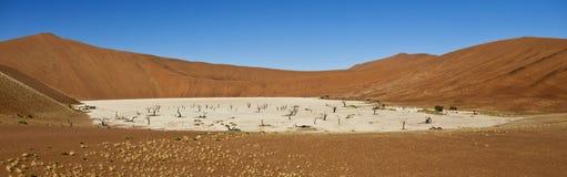Dode Vlei in Namibië Stock Afbeeldingen