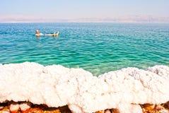 Dode zee, Israel; Dead Sea, Israel stock photography