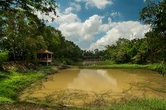 Dodend Gebiedenmeer - Kambodja Royalty-vrije Stock Foto