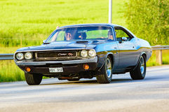 Dodge challenger 1970 black Stock Photography