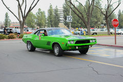 Dodge Challenger classic car on display Stock Image