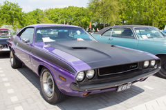 1970 Dodge Challenger Royalty Free Stock Image