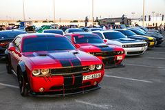 Dodge Challenger. Dubai, UAE - November 15, 2018: Muscle cars Dodge Challenger take part in the annual Gulf Car Festival stock photography