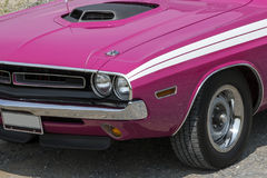 Dodge challenger front end. Picture of pink dodge challenger front end with shaker hood and white stripes stock photography