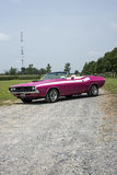 Dodge challenger. St liboire august 2, 2014 front side view of pink dodge challenger convertible with 426 hemi engine and shaker hood during mopar convention Stock Image