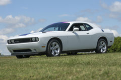 Dodge challenger Stock Image
