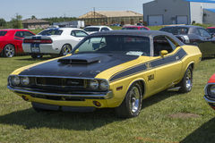 Dodge challenger ta Stock Images
