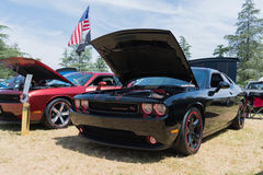 Dodge Eiser rechts op vertoning Royalty-vrije Stock Fotografie