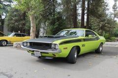 Dodge-Herausforderer TA auf Anzeige Lizenzfreies Stockfoto