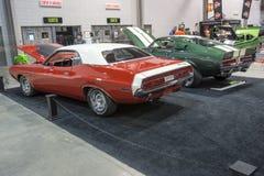Dodge-Herausforderer und shelby Stockbild