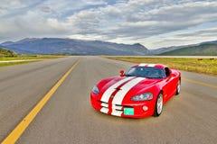 Dodge żmija Zdjęcie Stock