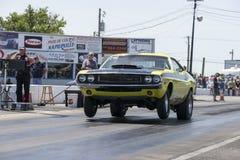 Dodge-uitdager wheelie Royalty-vrije Stock Afbeeldingen