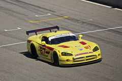 Dodge Viper at Grand AM Rolex Races Royalty Free Stock Photos