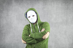 Dodger in the mask Stock Photography