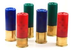 Dodici cartucce per fucili a canna liscia variopinte del calibro Fotografia Stock Libera da Diritti