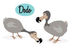 Dodo bird illustration Royalty Free Stock Photo