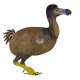 Dodo Bird Side Profile royaltyfri illustrationer