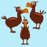 Dodobird Стоковое Изображение