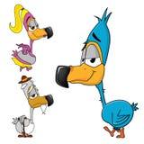 Dodofamilie, Karikatur einer Vogelfamilie mit einem zarten und leichten jungen Vogel, der zur Kamera lächelt, großes Maskottchen  Lizenzfreie Stockbilder
