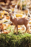 Doe in forest. Deer toy figurine in situation. Stock Images