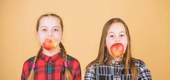 Doe of het dieet, eet net voor toekomstige helder Kleine kinderen die organisch dieet kiezen Het fokken van gezonde jonge geitjes stock afbeelding