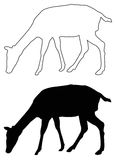 Doe silhouette. Vector file of doe silhouette vector illustration