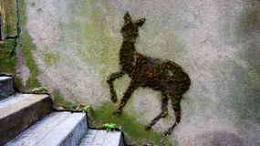 Doe street art Royalty Free Stock Images