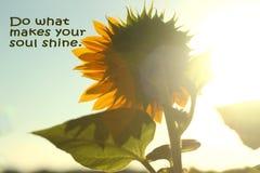 Doe wat uw ziel maakt glanzen Inspirational citaat Zelfherinnering royalty-vrije stock afbeeldingen