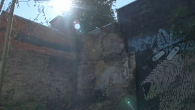Doel, Belgium: Graffiti Eye Popping Dog Damaged Wall Lens Flare. DOEL, BELGIUM - 2 OCT 2015: Abandoned buildings during a sunny day in Doel, a town being stock video footage