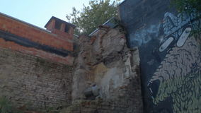 Doel, Belgium: Graffiti of Eye Popping Dog beside Damaged Wall. DOEL, BELGIUM - 2 OCT 2015: Abandoned buildings during a sunny day in Doel, a town being stock footage
