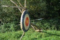Doel van stro het hangen van de oude boomtak met door pijlen Stock Afbeelding