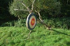 Doel van stro het hangen van de oude boomtak met door pijlen Royalty-vrije Stock Foto