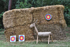 Doelstellingen met herten Stock Afbeelding