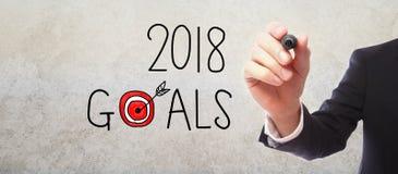 2018 doelstellingen met zakenman Stock Afbeelding