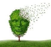 Doença da demência Fotografia de Stock