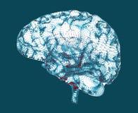 Doenças degenerativos do cérebro, ` s de Parkinson, ` s de Alzheimer, ilustração stock