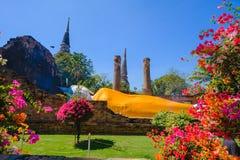 Doende leunen Boedha bij Wat Yai Chai Mongkhon Old-Tempel Royalty-vrije Stock Afbeeldingen