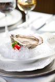 dof小冰的牡蛎 免版税库存照片