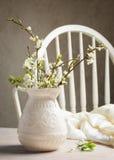 dof ανθών αζαλεών στενή ρηχή άνοιξη λουλουδιών επάνω Στοκ Εικόνες