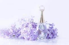 Doft med lila blommor royaltyfri bild