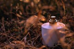 Doft med torra blommor Royaltyfri Foto