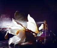 Doft och blommor Royaltyfri Foto